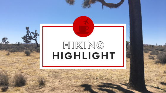 Copy of Hiking Highlight