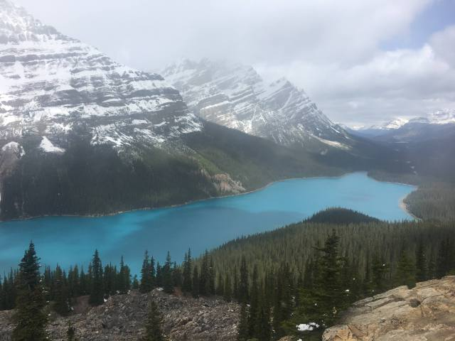 Guide to Icefields Parkway Peyto Lake